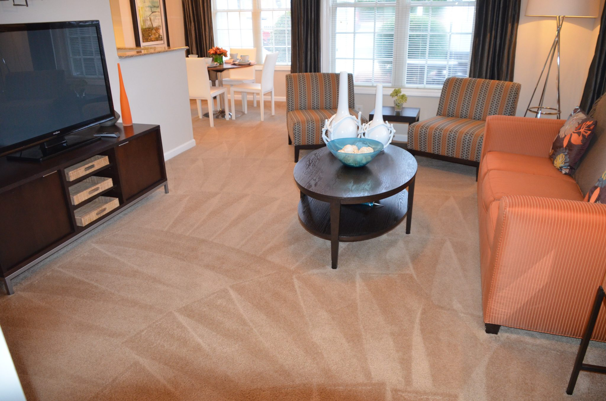Professional Care Carpet Cleaning Fayetteville Nc Williams